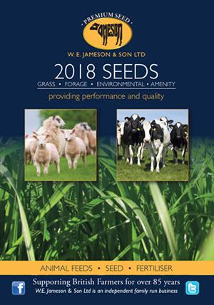 2018 Seeds