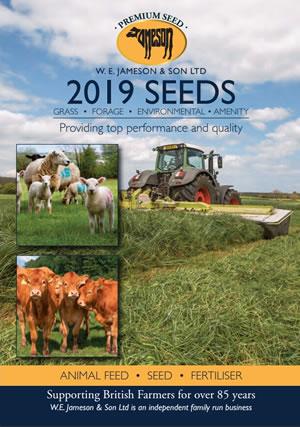 2019 seeds